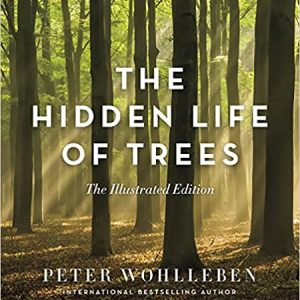 The Hidden Life of Trees: Illustrated Edition