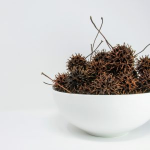 Witches Burrs in a white bowl