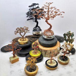 The Enchanted Forest Collection