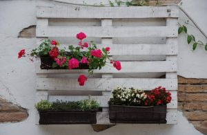 pallet turned into a vertical garden